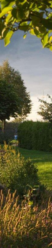 Gärtnerbetrieb Löwer-Baumpflege