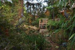 Garten Beratung
