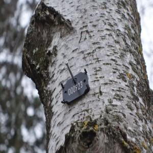 Baumnummer-300x300
